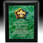 Acrylic Faceplate Plaque Acrylic & Glass Plaques