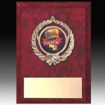 Insert Style Plaque Award Plaques