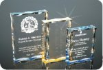 Scalloped Edge Plaque Acrylic Award Corporate Acrylic Awards Trophy
