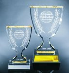 Trophy Cup Employee Awards