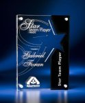 Star Cutout Clear and Black Acrylic Award Star Acrylic Award Trophy